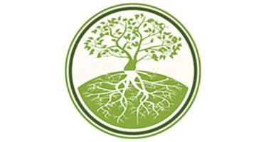 Anniversaire de l'Arbre de Vie, une association novatrice en plein essor à Montoire