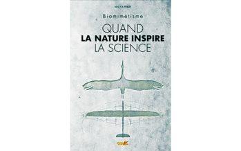 Chronique de Camille, décembre 2016 : Biomimétisme, quand la nature inspire la science