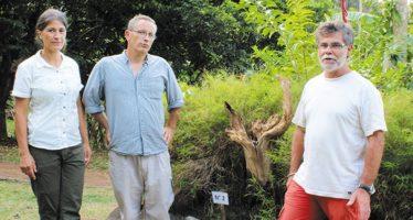 Un artiste vendômois à Mayotte
