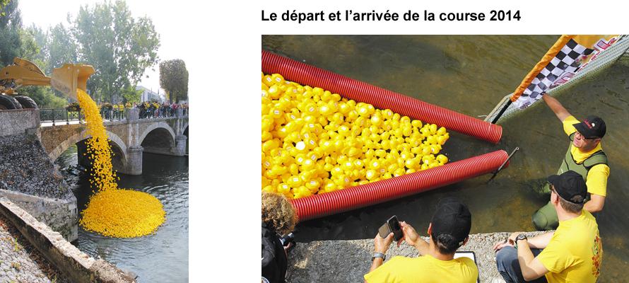 Duckrace-2014