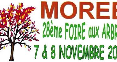 28e foire aux arbres à Morée Samedi 7 et dimanche 8 novembre