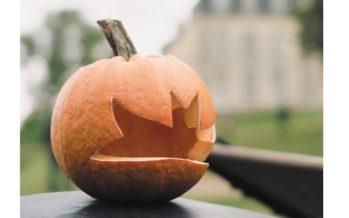 Fête des cucurbitacées, à Rochambeau le 15 octobre