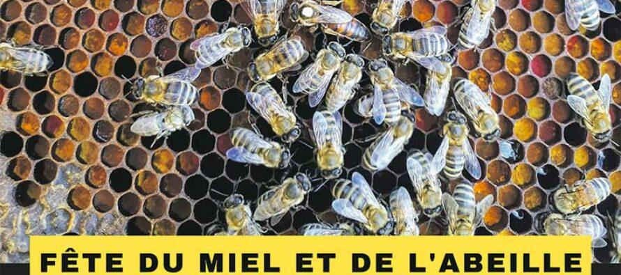Les abeilles et le miel en juin