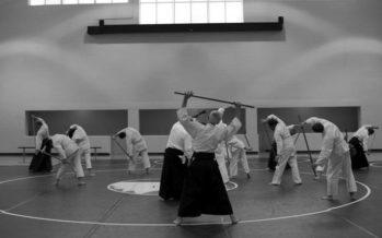 Week-end aïkido avec Nebi Vural