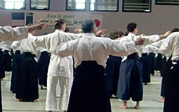 L'Aikitaïso, une nouvelle discipline à Montoire-sur-le-Loir