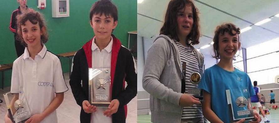 Badminton : des championnats de «Fous»