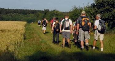 A la découverte de sentiers et chemins forestiers vendômois