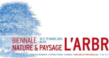 Biennale «Nature et paysage» à Blois : l'Arbre