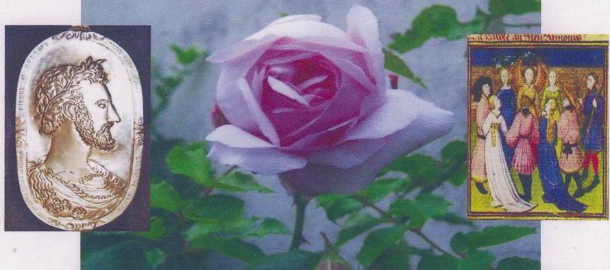 La rose dans tous ses états