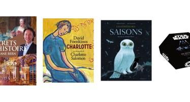 Idées-Cadeaux : La sélection littéraire de la Maison de la Presse à Vendôme