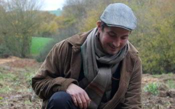 Production de thé bio en Vendômois
