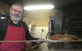 Du blé bio au pain depuis plus de 40 ans à la Ferme des 3 Buissons