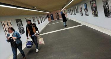Photographie: «Des métiers, des visages, les agents territoriaux s'exposent»