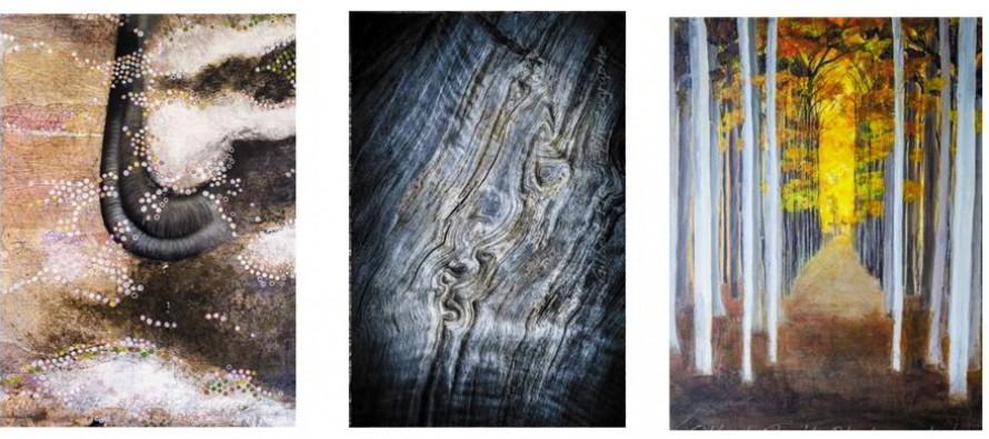 """Exposition chez Marie.Liesse.Galerie : 3 artistes pour un titre : """"Sève"""""""