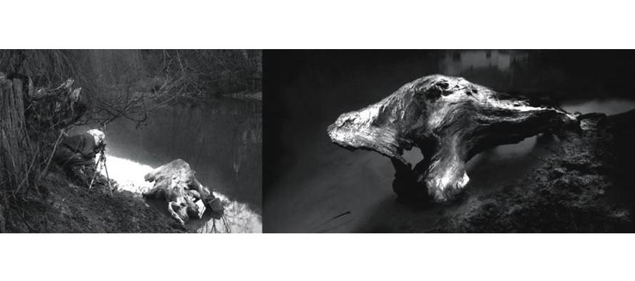 «Errance nocturne» 1ère exposition à Pezou jusqu'au 30 octobre