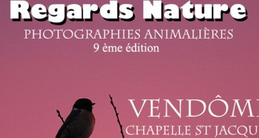 9e édition «Regards Nature» Vendôme, du 25 au 29 novembre, chapelle St Jacques