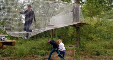 Planer en toute sécurité, entre les arbres à Chouzy-sur-Cisse