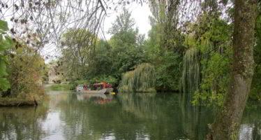 Couture-sur-Loir : l'Isle Verte retrouve tout son charme