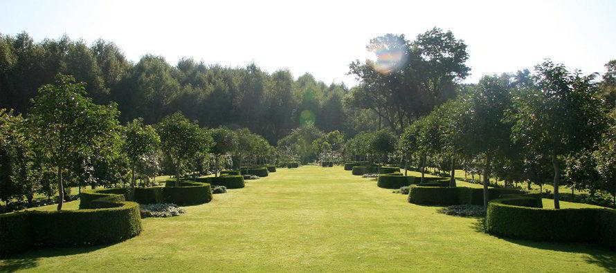 Balades dans des jardins