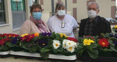 70 fleurs offertes en réconfort