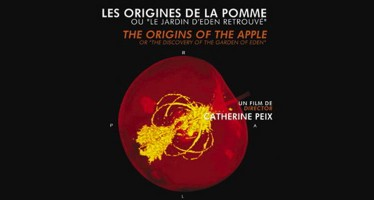 Les origines de la pomme, mercredi 28 octobre à La Chapelle Vicomtesse