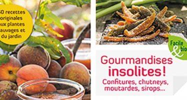 Gourmandises insolites