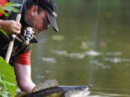 La pêche : Activité sportive ou de détente