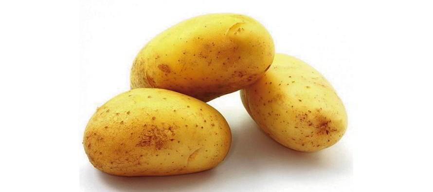 Le l gume pr f r des fran ais la pomme de terre tr sor du p rou le petit vendomois - Pomme de terre a la braise ...