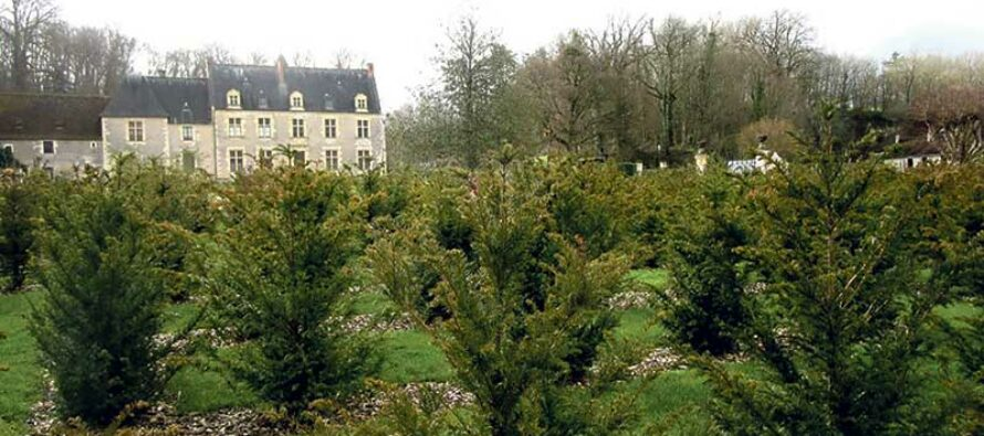 Un jardin d'inspiration Renaissance  pour le Manoir de La Possonnière