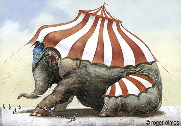 Stop Cirque 37 ; Code animal