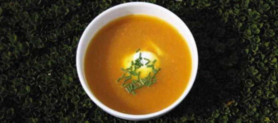Fête de la soupe au jardin du Plessis Sasnières – Dimanche 15 novembre
