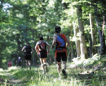 trail-du-loup-A