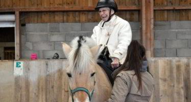 Au contact des chevaux