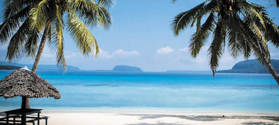 Vanuatu ; Camille Rhodon