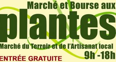 Bourse aux Plantes à Villetrun